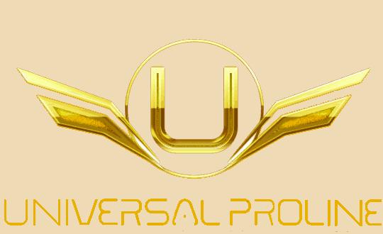 Universal Proline:  Auto Dealer, Logistic Services, SCM.